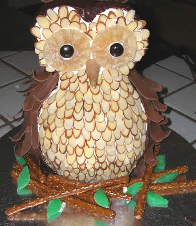 Cakes For Fall How To Make A Hoot